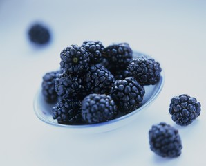 Fresh blackberries in a dish