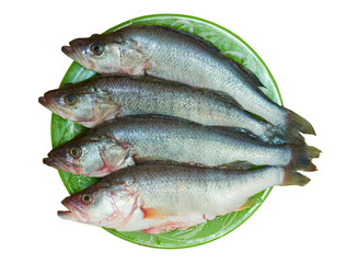 Fresh fish is perch on a plate