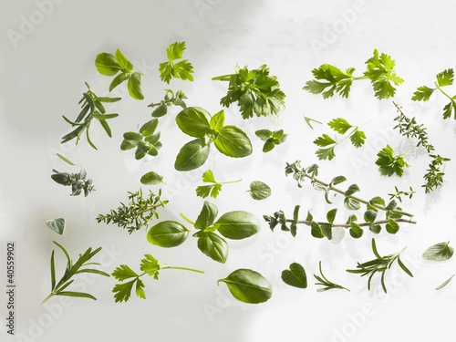 Fresh herbs: basil, rosemary, thyme, hyssop etc.