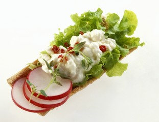 Bread with cottage cheese, lettuce and radishes