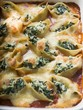 Gratin of pasta shells with spinach and mozzarella