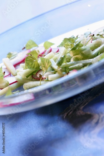 Spring salad with radishes and young birch leaves