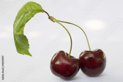 Two cherries with stalk and leaf