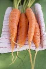 Fresh carrots on tea towel