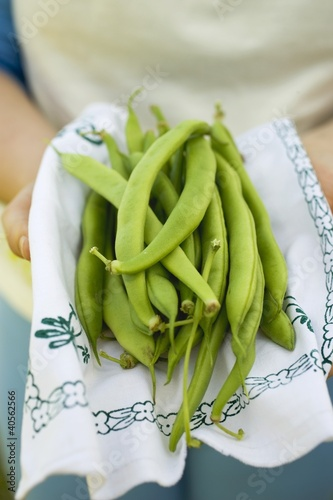 Hands holding green beans on cloth