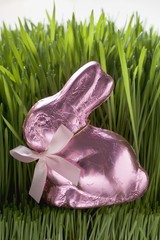 Pink chocolate Easter Bunny in grass