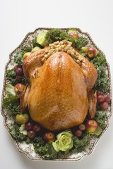Stuffed turkey on platter (overhead view)