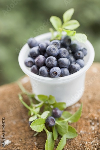 Blueberries in plastic tub