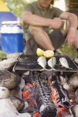 Man grilling fish over camp-fire