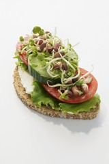 Wholemeal bread topped with vegetables, lettuce & sprouts
