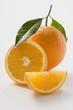 Orange with stalk and leaf, orange half and wedge