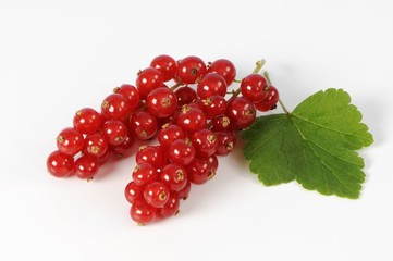 Redcurrants with leaf