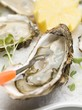 Fresh oysters with cress and lemon