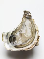 Half an oyster