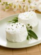 Fresh goat's cheese with herbs