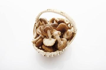 Fresh shiitake mushrooms in basket