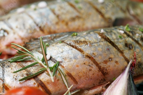 Grilled charr with rosemary