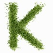 The letter K in cress