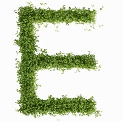 The letter E in cress