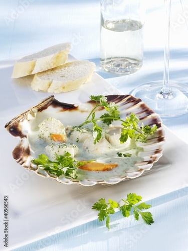 Scallops in chervil and mascarpone sauce
