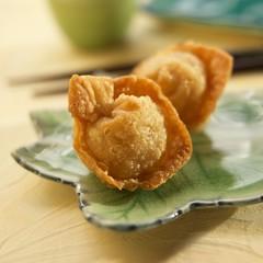 Fried Asian Dumplings on a Plate