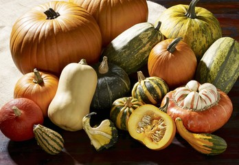 Squash and pumpkin still life