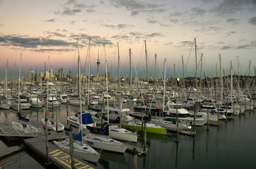 Auckland yachting
