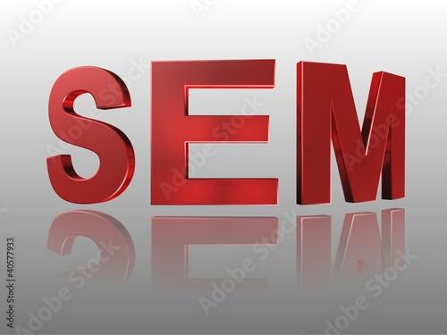3D Wort SEM