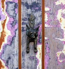Unusual Fox door knocker on distressed door