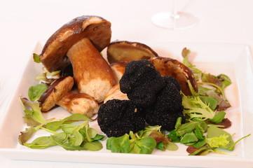 Funghi porcini e tartufo