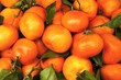 Heaps of tangerines with leaves