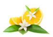 Orange and flower