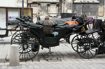 Carriage in front of St. Stephen's Cathedral, Vienna