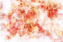 Dry roses beautiful, artistic background