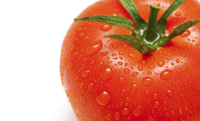close-up of tomato with water drops