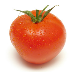 tomato with droplets