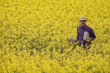 Farmer in a rape field