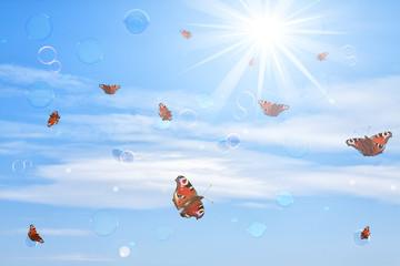 Schmetterlinge & Seifenblasen