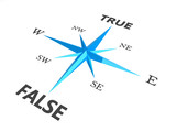 true versus false dilemma concept compass  isolated on white bac poster