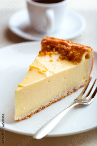 Piece of Cheesecake and Cake Fork on a Plate