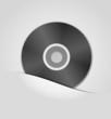 CD package vector