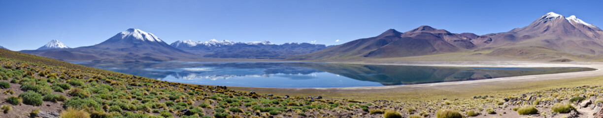 Panorama of Miscanti Lagoon in Altiplano Chile