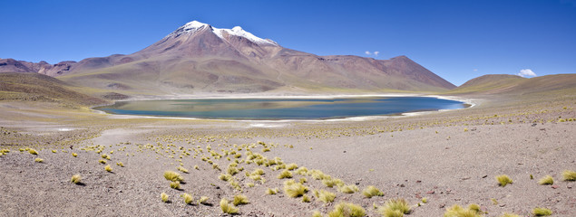 Panorama of Miniques Lagoon in Altiplano Chile