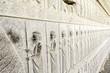 bas-relief of Persepolis in Fars Province, Shiraz, Iran