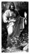 God Zeus - Jupiter