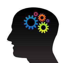 A travers la tête : Fonctionnement du cerveau