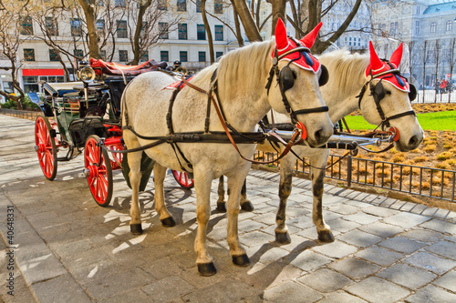 Fiaker horse carriage in Vienna, Austria