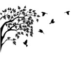 Tree silhouette and bird