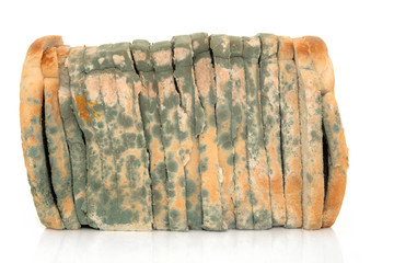 Mouldy Sliced Bread