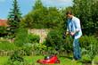 Mann mäht Rasen im Sommer